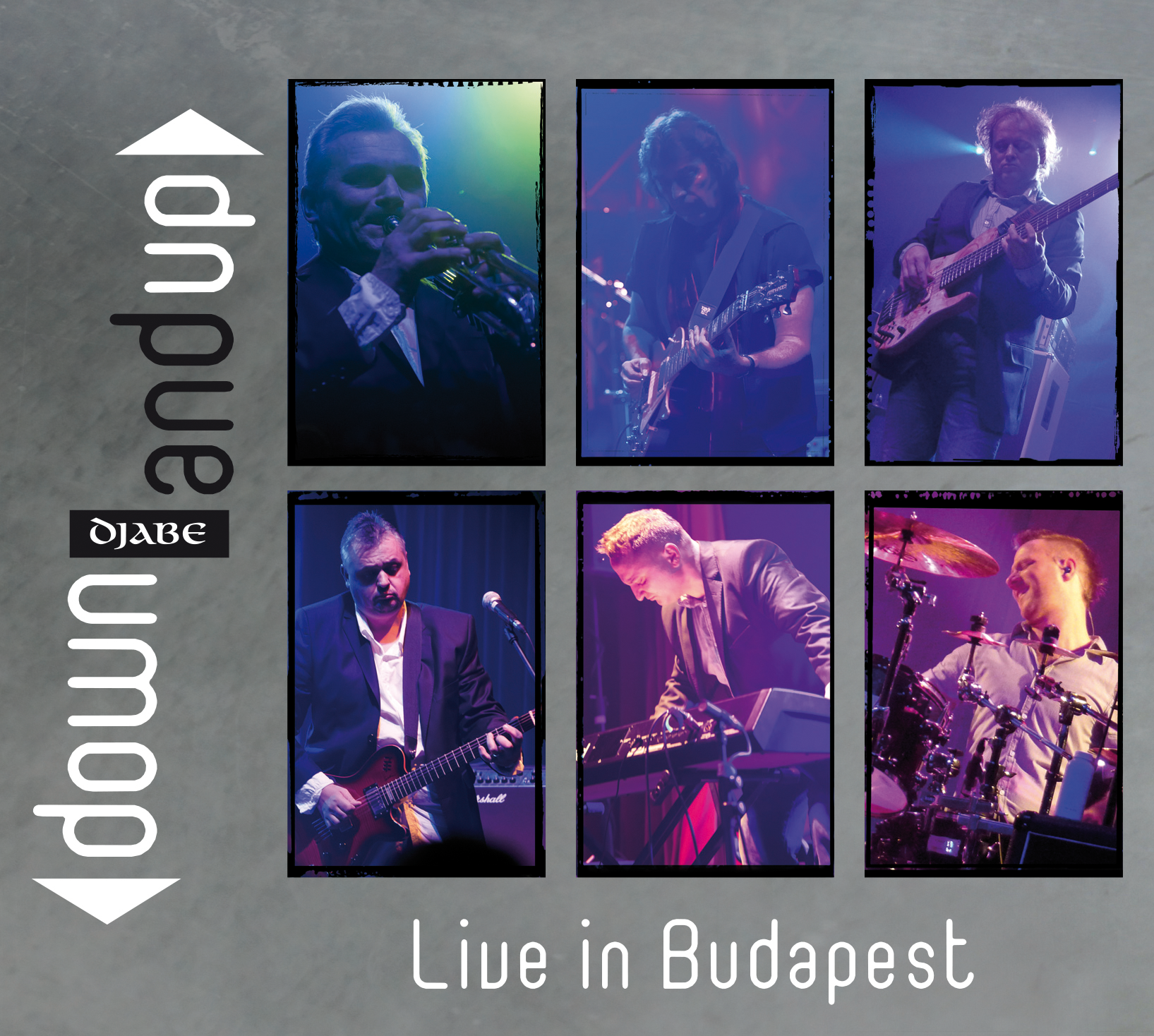 2013down_and_up_live_in_budapest_dvd